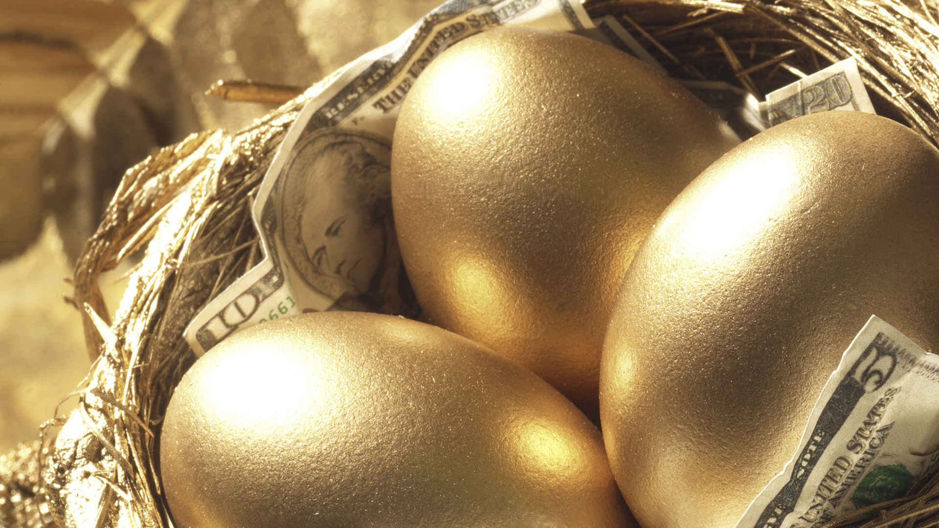 Close-up of golden eggs with paper currency in a bird's nest